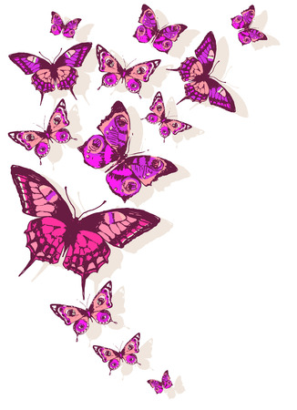 pink swirl: butterflies design Illustration