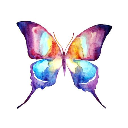 mariposa azul: mariposa, diseño de la acuarela