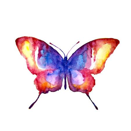 나비, 수채화 디자인
