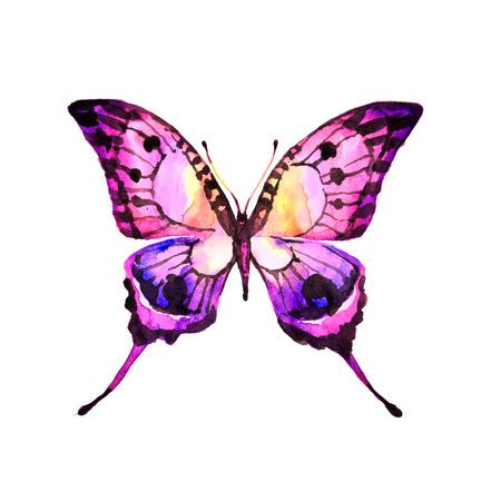 butterflies design Banco de Imagens