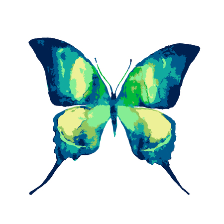 solated: butterfly,watercolor design