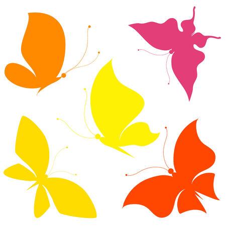 butterfly on flower: butterflies design Illustration