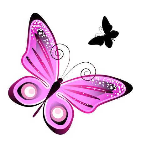 butterfly flower: butterflies design Stock Photo