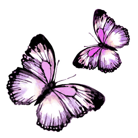 butterflies design 向量圖像