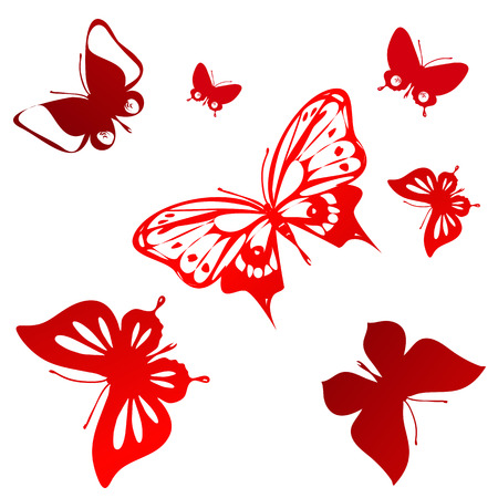 butterflies design photo