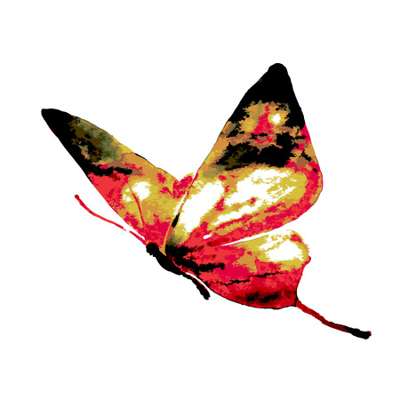 poorly: Paths are sloppy andor poorly constructed from watercolor paper on a watercolor butterfly. Illustration