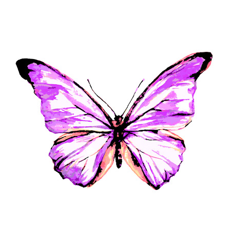 butterfly flower: butterflies design Illustration