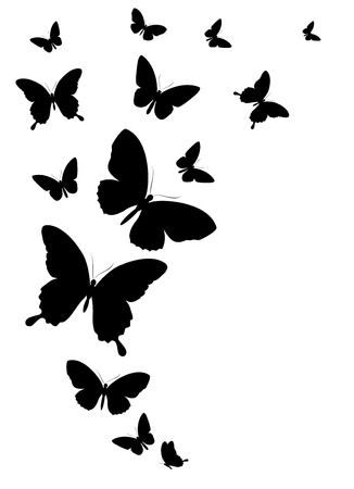 white flowers: butterflies design Illustration