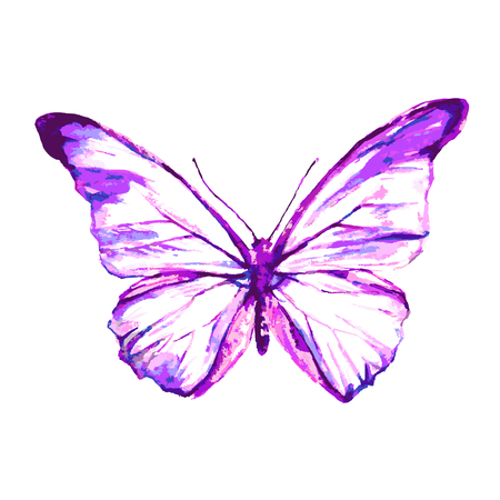 butterfly isolated: butterflies design Illustration