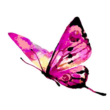 butterflies design Illustration