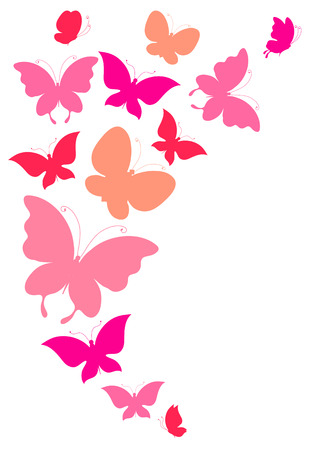 butterflies design 일러스트