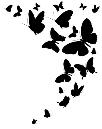 butterflies design Vettoriali