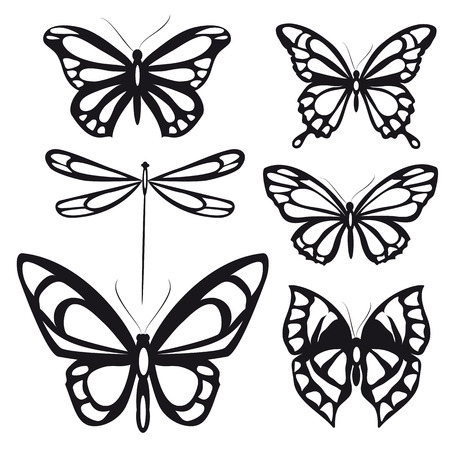 black and white flowers: butterflies design Illustration