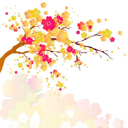 ramo di ciliegio: cherry branch Vettoriali