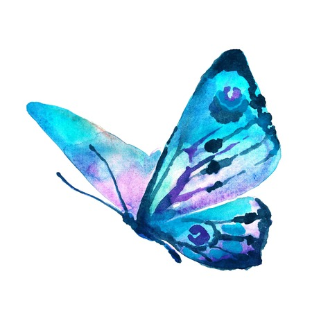 watercolor blue: butterflies design Stock Photo