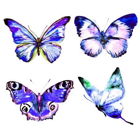 butterflies design Imagens