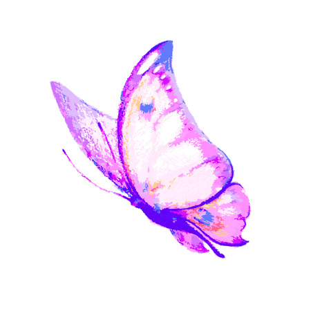 butterfly isolated: butterflies design Stock Photo
