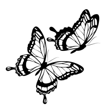 butterflies design Vectores