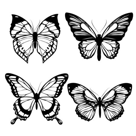 butterflies design Çizim