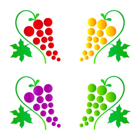 red grape: grapes Illustration