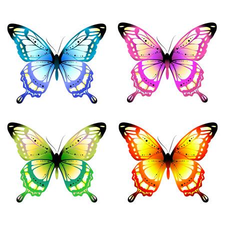 butterflies design Ilustrace