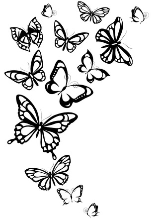 black butterfly: butterflies design Stock Photo