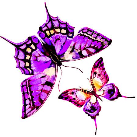 design: butterflies design Stock Photo