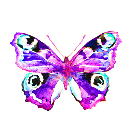 butterfly,watercolor, isolated on a white background