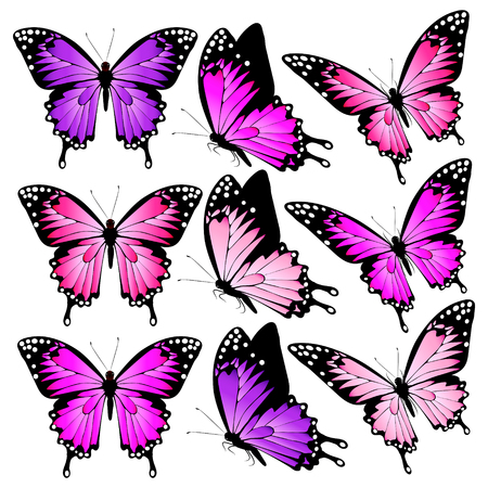 beautiful pink butterflies, isolated  on a white Фото со стока