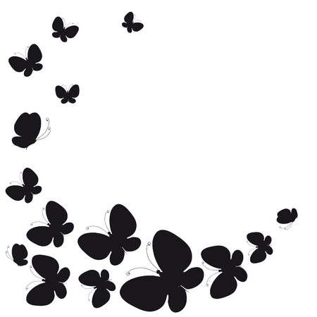butterfly background: black butterfly, isolated on a white