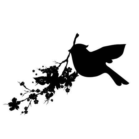 silhouete: beautiful bird,black silhouette, on a white