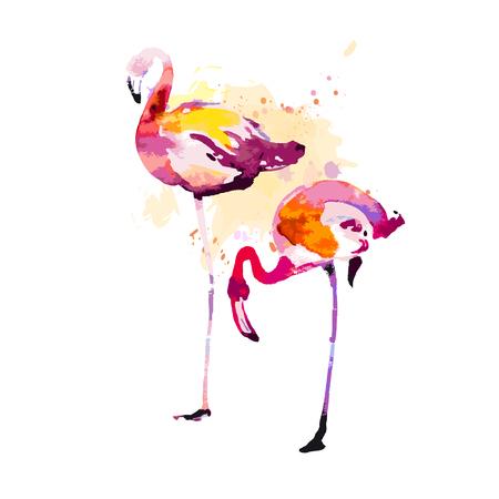 Beautiful watercolor flamingos, isolaned on a white. Big set. Illustration