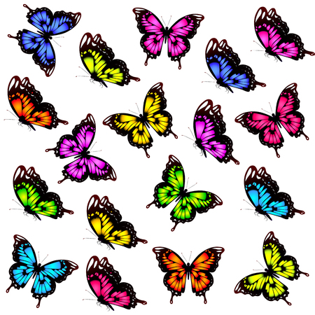 violet red: beautiful color butterflies,set, isolated  on a white Illustration