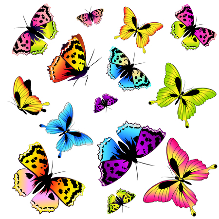 butterfly isolated: beautiful color butterflies,set, isolated  on a white Illustration