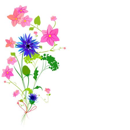 Beautiful wildflowers illustration.