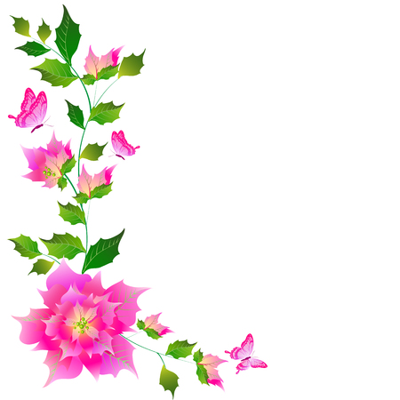 Beautiful pink flowers , on a white background Illustration