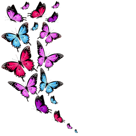 beautiful color butterflies,set, isolated on a white background Vectores
