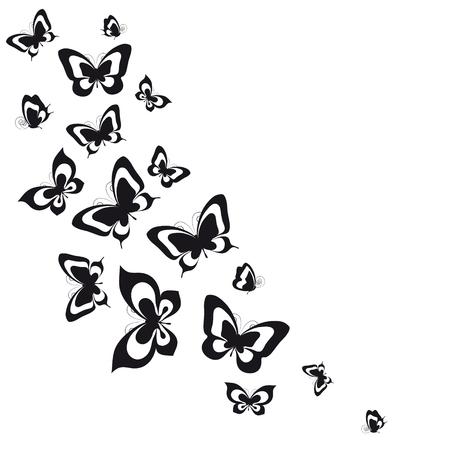 Black butterflies 일러스트