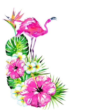 Beautiful pink flamingo and exotic flowers palm leaves watercolor beautiful pink flamingo and exotic flowers palm leaves watercolor stock photo picture and royalty free image image 97463015 mightylinksfo