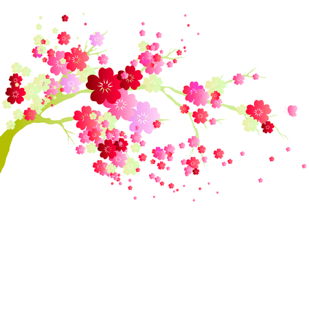 pink flowers tree, spring blossom, on a white background