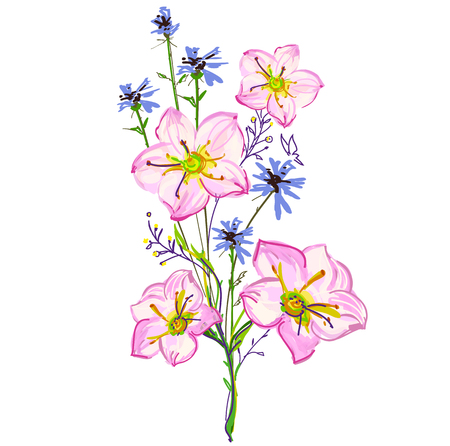 Beautiful wildflowers, bouquet, isolated  on a white 일러스트