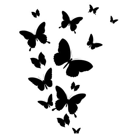 白い上に隔離された黒い蝶 ベクターイラストレーション