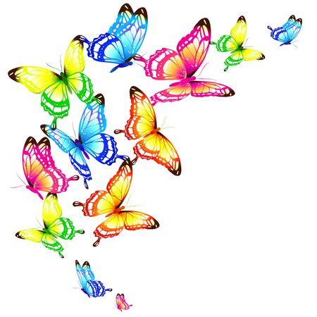 Hermosas mariposas de colores sobre un blanco Ilustración de vector