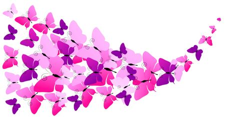 Beautiful butterfly isolated on a white Stock Illustratie