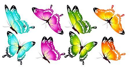 hermosas mariposas de colores, conjunto, aislado en un blanco