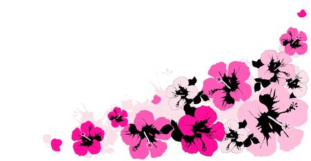 beautiful pink flowers ,butterflies, on a white