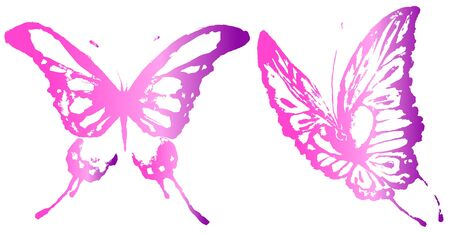 beautiful pink butterflies, isolated  on a white Vectores