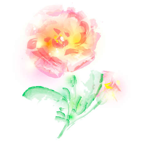 beautiful pink flowers, watercolor, isolated on a white