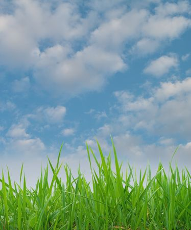 background of cloudy sky and grass  photo