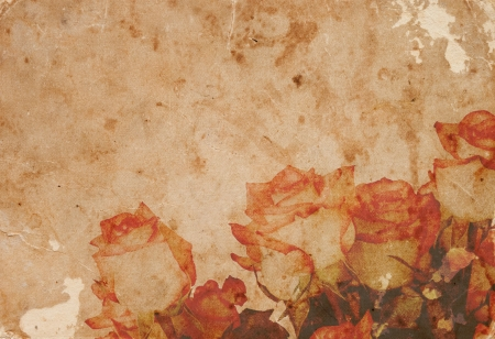decay: Warm rose in vintage paper background